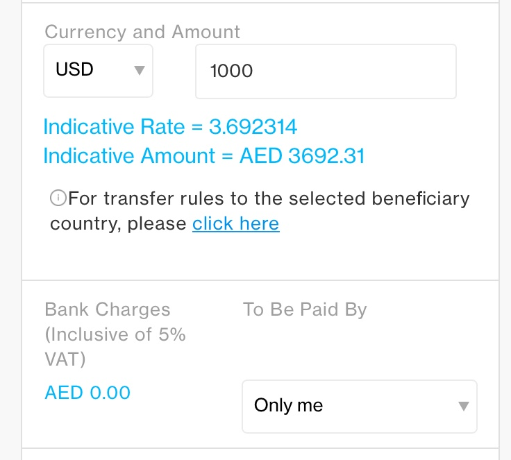 Remittance And Money Transfer Options